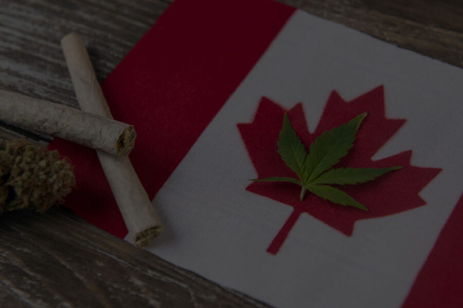 The New Legislation of Marijuana Laws in Canada
