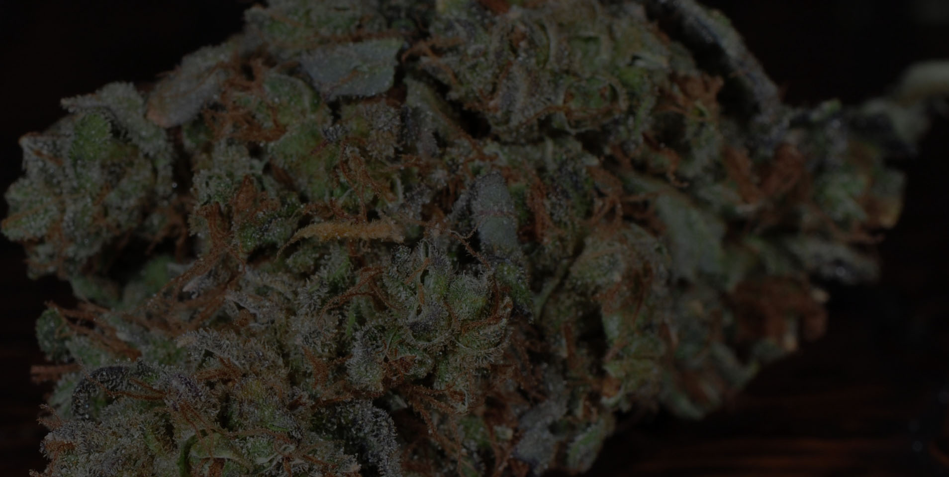 Your Guide to Producing Better Smelling Bud
