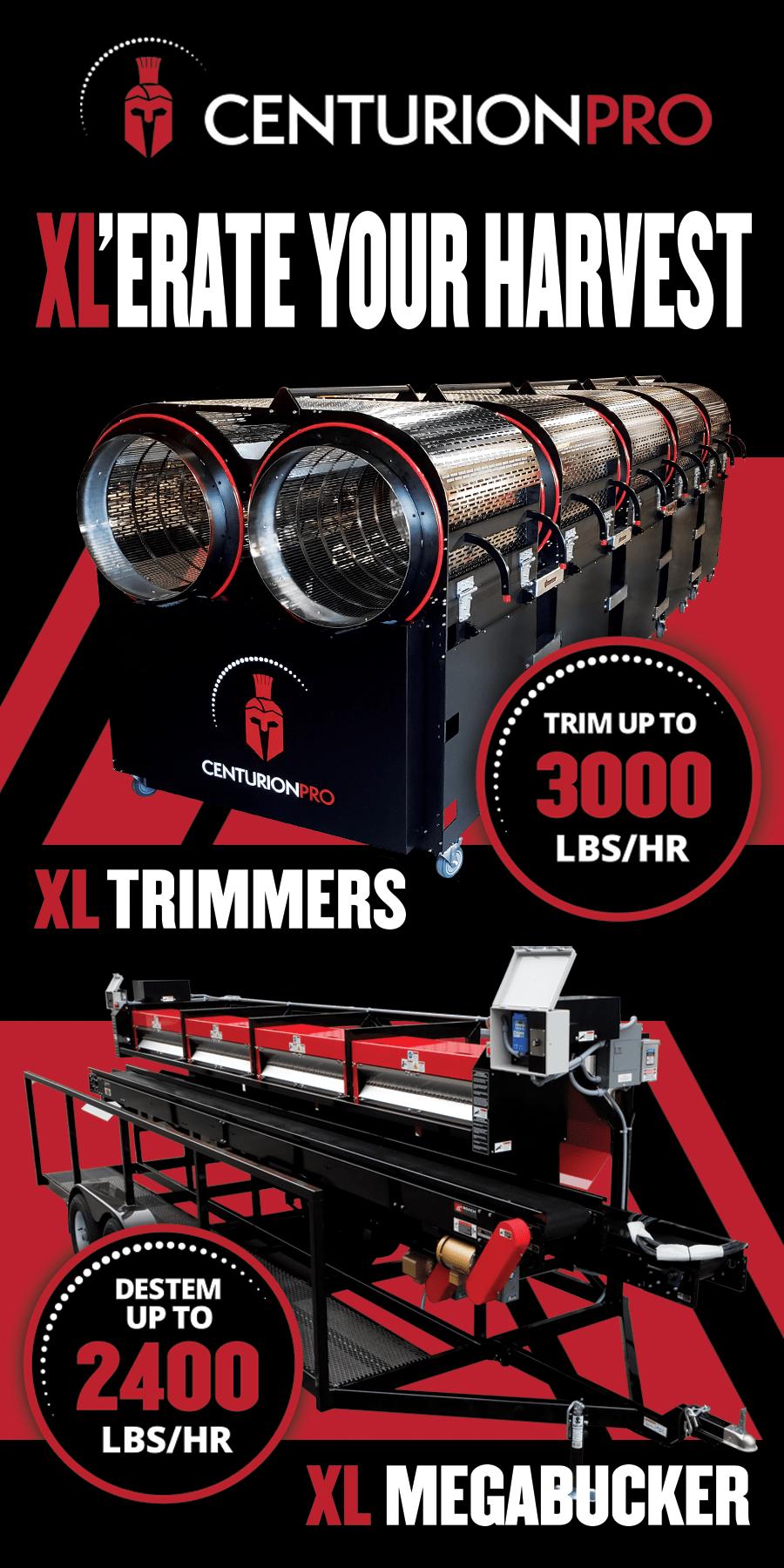 900x1800px_XL_Banner_Trimleaf