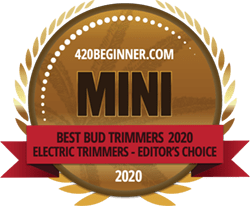 icons_Awards_2020_420_beginner_mini