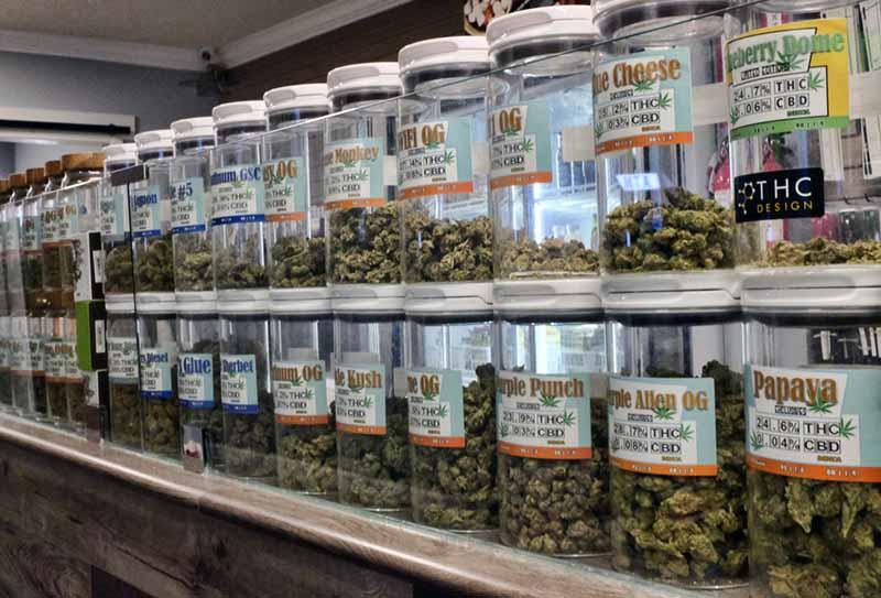 Legalized Pot Medical